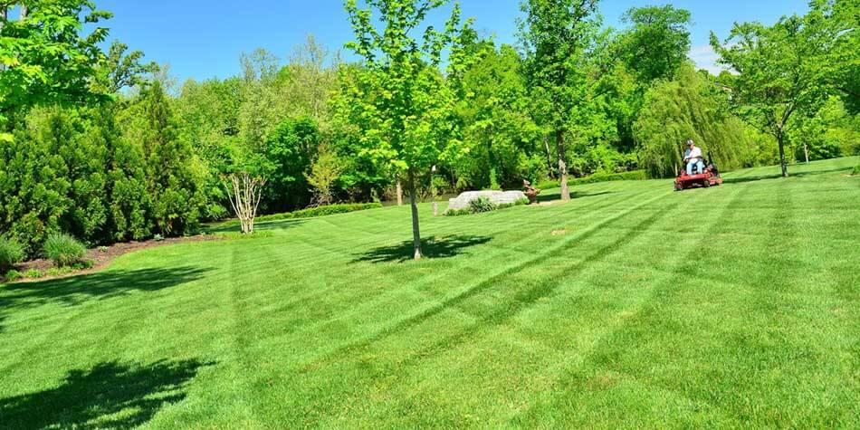 Minocqua Lawn Mowing Services