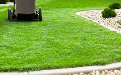 Minocqua Lawn Care Services