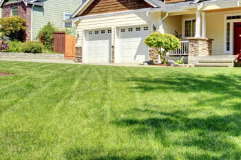 professionally-mowed-lawn