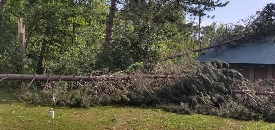 Minocqua Storm Clean Up Servives
